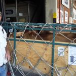 Cattle in airfreight crate