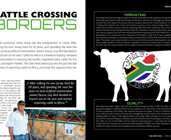 Cattle Crossing Borders Article